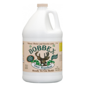 Original Bobbex Label